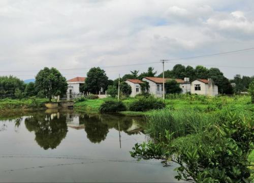 江苏南京溧水区提升农村人居环境方法
