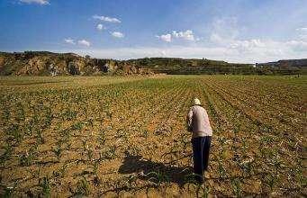 新一轮农地改革施工图已明晰 更多土地制度供给将渐次落地